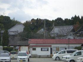 お寺の屋根瓦が美しいです