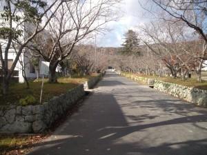 賀集八幡神社の長い参道