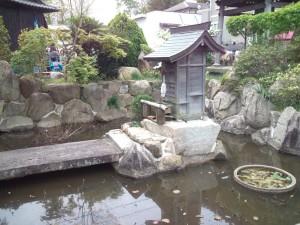 志筑 八幡寺の庭