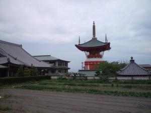 畑ごしに見る八浄寺