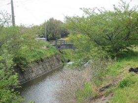 都志川の支流