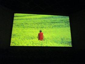 「菜の花の沖」ロケ映像