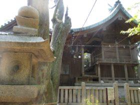 都志八幡神社 本殿